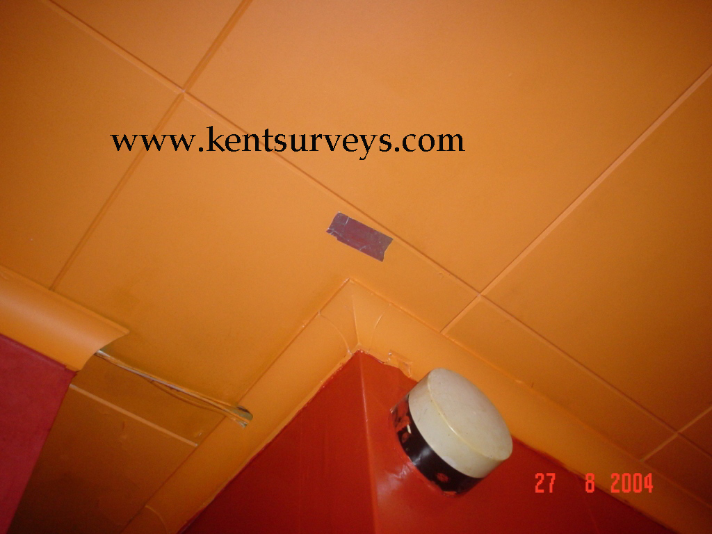 Asbestos ceiling tile removal cost images tile flooring design ideas asbestos ceiling tile removal cost images tile flooring design ideas asbestos floor tile removal cost per doublecrazyfo Images